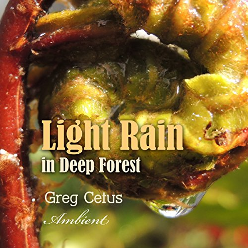 Light Rain in Deep Forest audiobook cover art