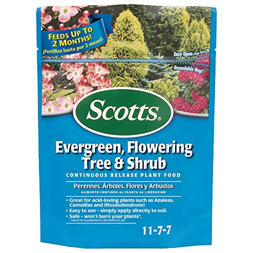 Scotts 1009101 Continuous Release Evergreen Flowering Tree and Shrub Fertilizer (6 Pack), 3 lb