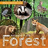Animals in the Forest (Where Animals Live)