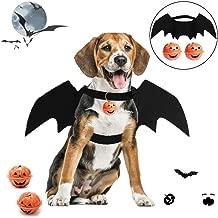 Best black dog dragonwings Reviews