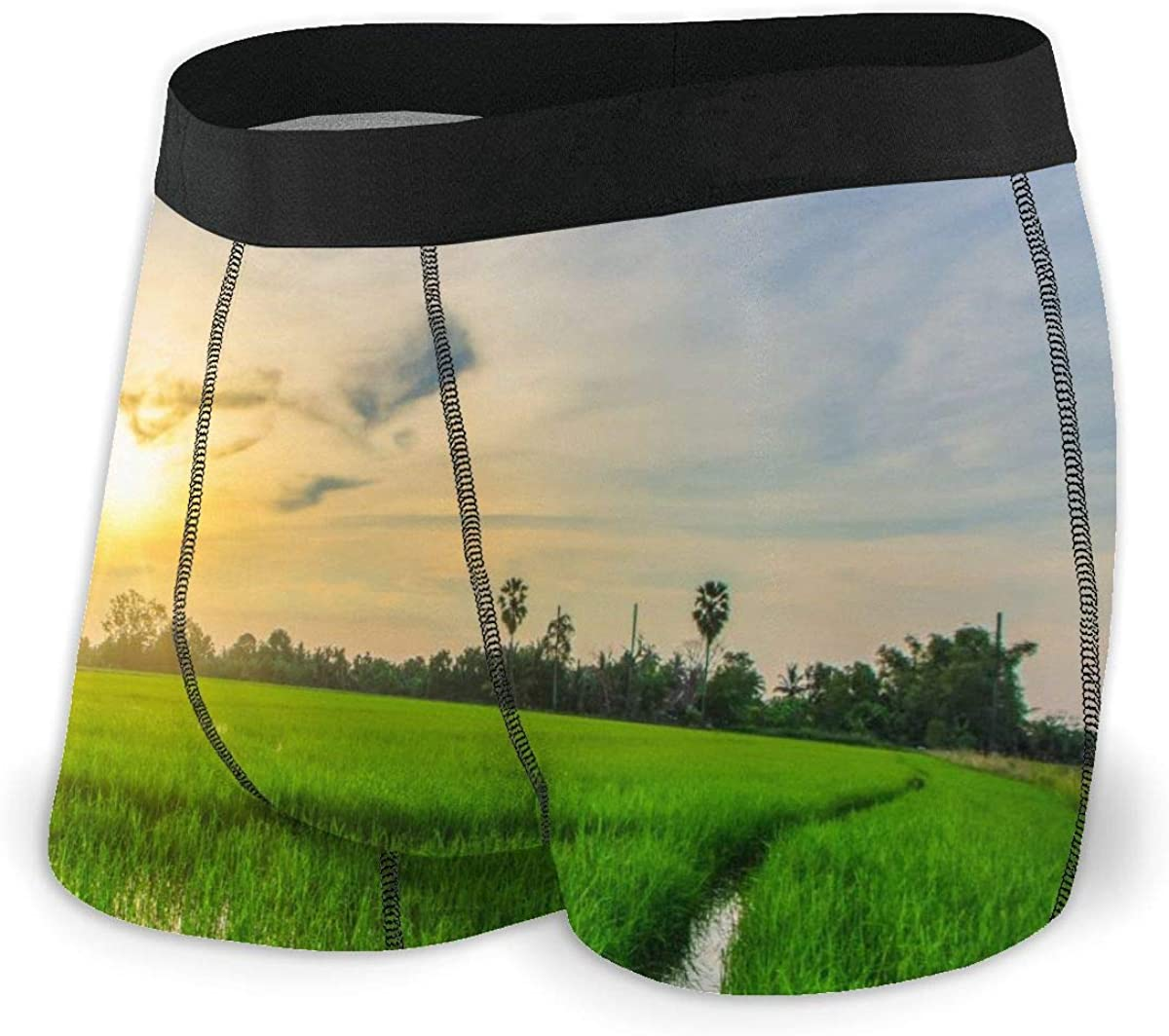 Mens Boxer Briefs Green Rice Fields with Solar Sky Breathable Underwear