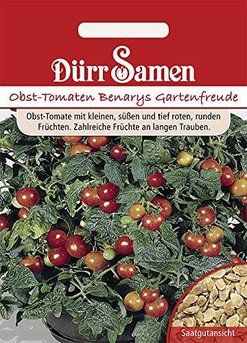 Obst-Tomaten Benarys Gartenfreude
