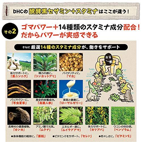 DHC 醗酵黒セサミン+スタミナ 30日分 袋180粒