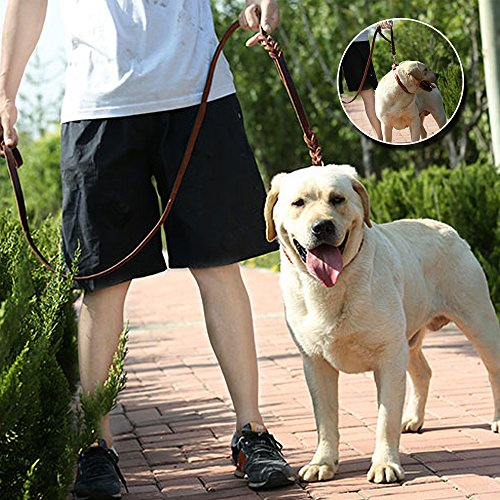 Wellbro Double Handle Leather Dog Leash