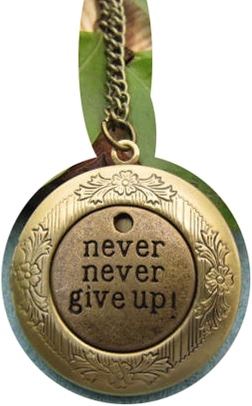 Bronze Never Never Give up Locket, Never Give up Locket Necklace,5pcs