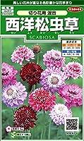 サカタのタネ 実咲花6471 西洋松虫草 切り花用混合 00906471