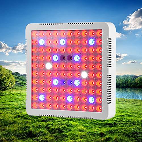 WQYRLJ 300 W hoofdcoltiva Het heldere paneel SMD3030 LED plantenlamp voor de kas Idroponica Dell' interieur verlichtingssystemen