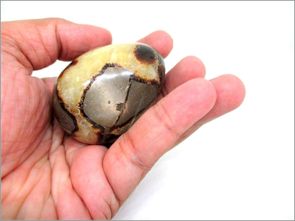 Jet Energized Septarian Gemstone Egg mm Hand Carved Safety and trust Crysta Deluxe 45-50