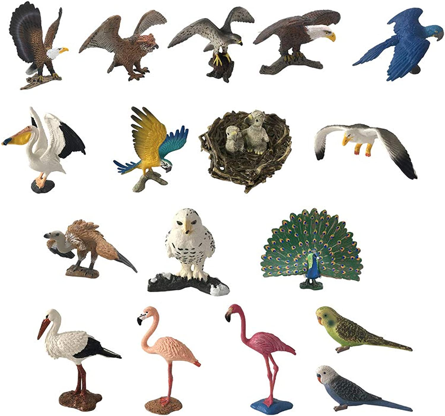 D DOLITY 18PCS Different Bird Toy Figurine Models, Including Macaw, Pelican, Crane, Seagull, Parred, Flamingo, Owl, Eagle, Vulture Bird, Peacock, and More