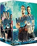 61OQEcuZE1S. SL160  - Hawaii 5-0 Saison 10 : L'équipe de Steve McGarrett est de retour pour la dernière fois sur M6