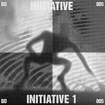 Initiative 1