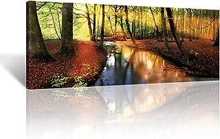 Best autumn sunset painting Reviews