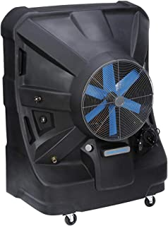 champion evaporative cooler