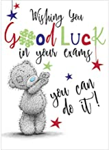 Good Luck in Your Exams Cute Me to You Bear New Greetings Card