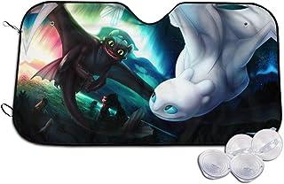IUSGWY SWJI How to Train Your Dragon Custom Metal License Plate for Car 6 X 12