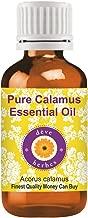 Deve Herbes Pure Calamus Essential Oil (Acorus calamus)-15ML (0.50 oz)
