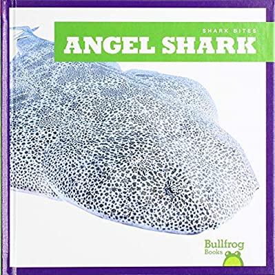 Angel Shark (Bullfrog Books: Shark Bites)
