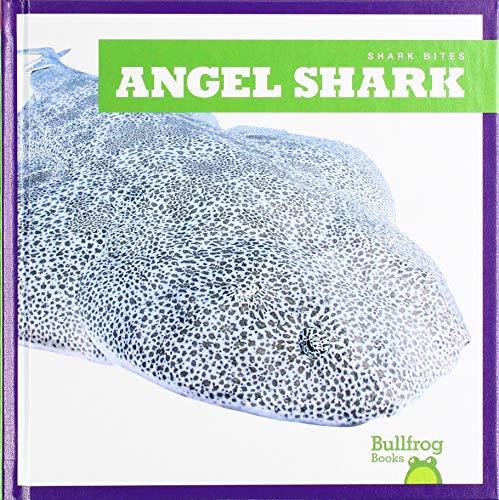 Gleisner, J: Angel Shark (Shark Bites)