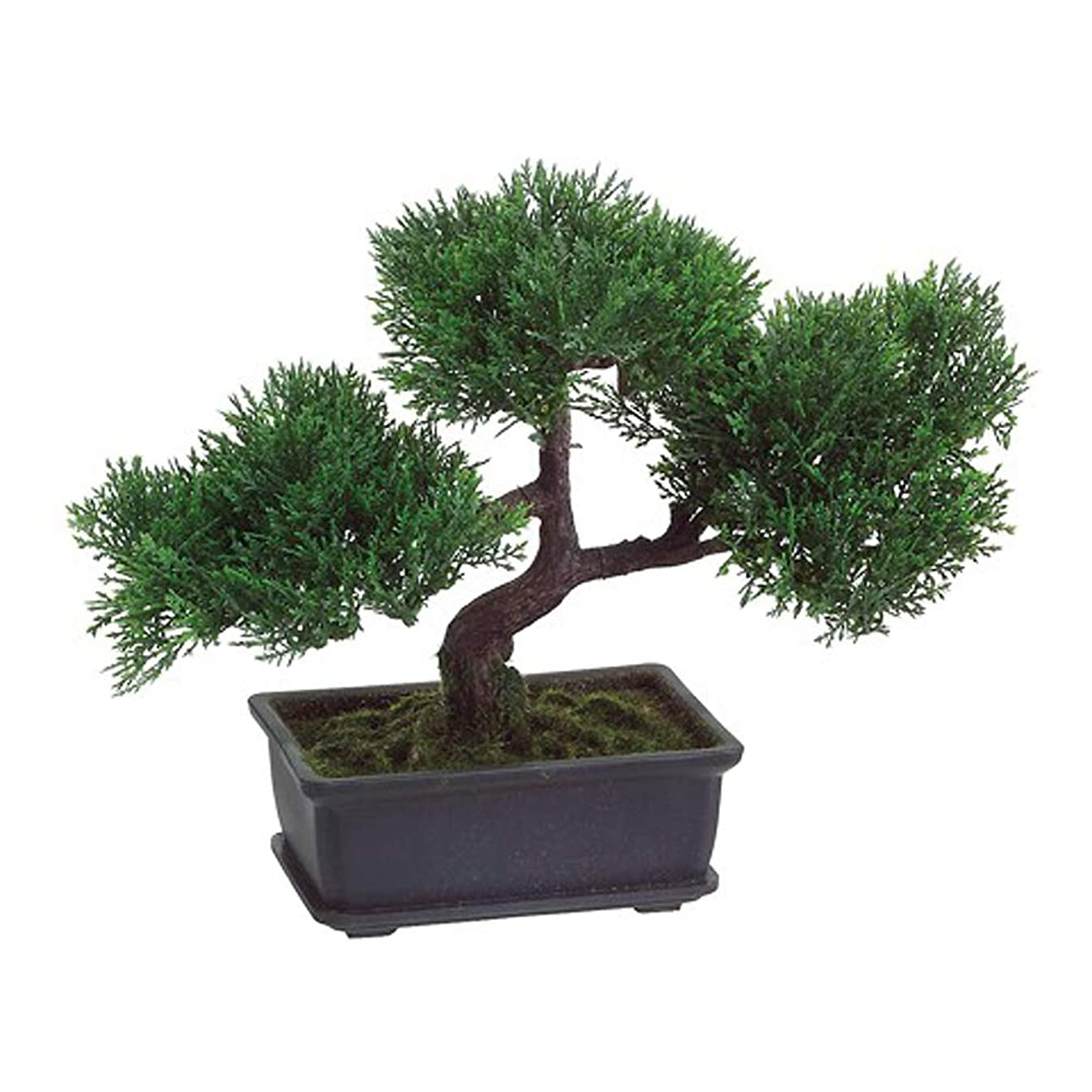 T-Trove Artificial Japanese Cedar Bonsai Tree 9 inch Tall