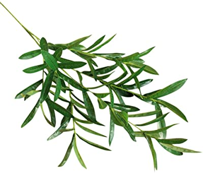 Amazon com: Wingbind Artificial Olive Branch Fake Green Leaf