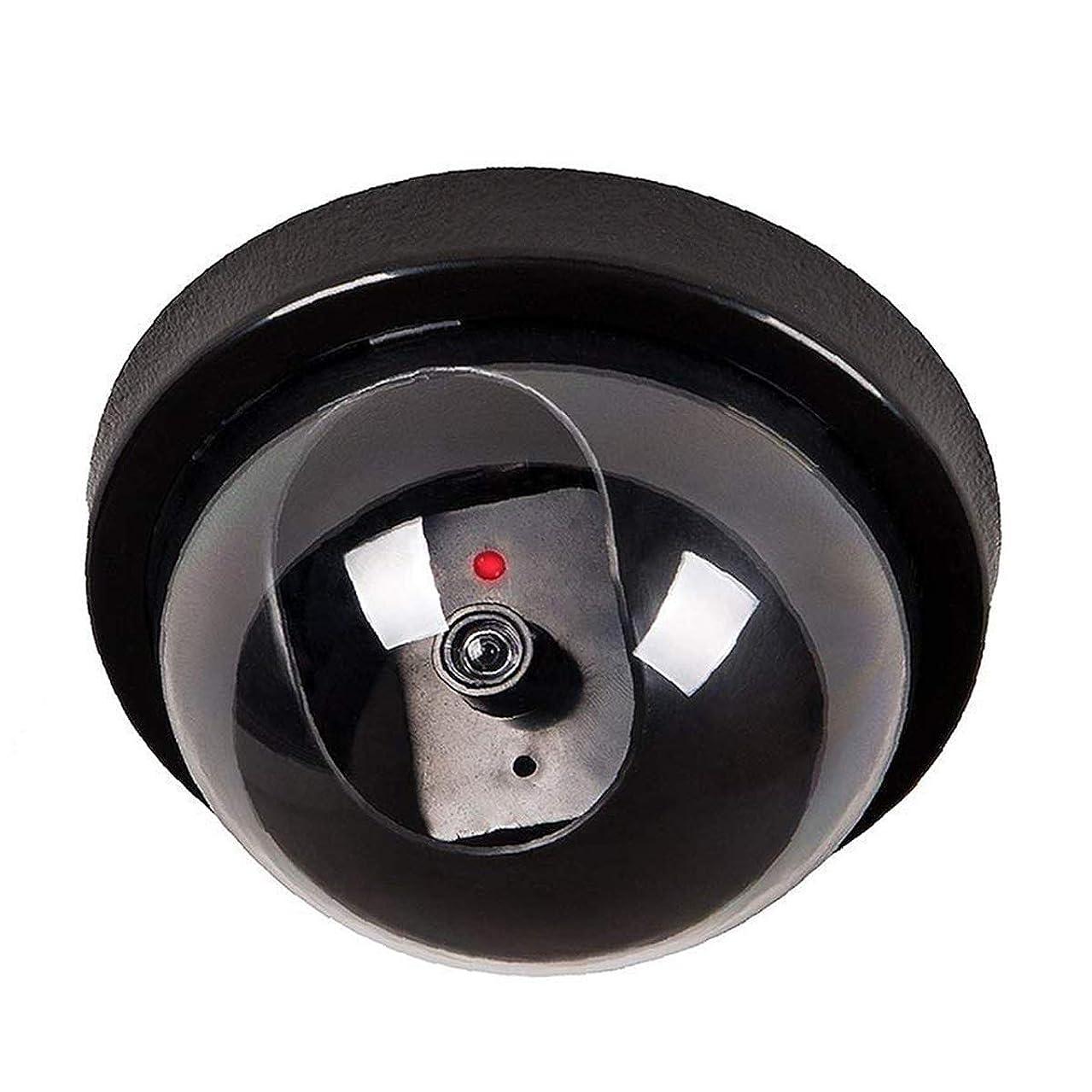 WALI Security Camera CCTV PTZ Dome Dummy Camera
