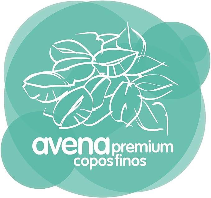 Energy Feelings Avena Ecológica Premium sin Gluten en Copos ...