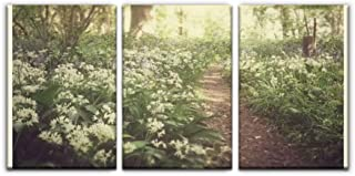 Gracelapin Canvas Wall Art Decor, Wild Garlic and bluebells in Ancient Woodland, Suffolk Printed Oil Painting Home Decoration- 3 Panels
