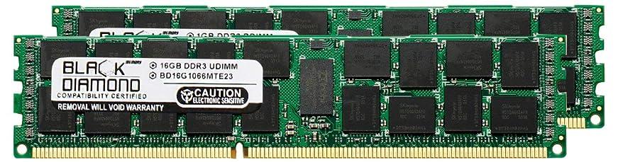 パイ利得敬意を表する32GB 2X16GB Memory RAM for Dell PowerEdge T710 240pin PC3-8500 1066MHz DDR3 ECC Registered RDIMM Black Diamond Memory Module Upgrade