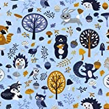 0,5m Jersey hellblau Waschbär, Igel & Seine Freunde 95%