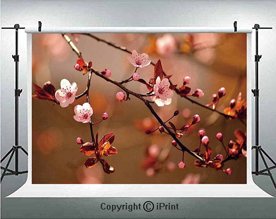 Nature Photography Backdrops Cherry Blossom Sakura Tree Branches Flowering Japanese Flourishing Print Decorative,Birthday Party Background Customized Microfiber Photo Studio Props,7x5ft,Light Pink Dar