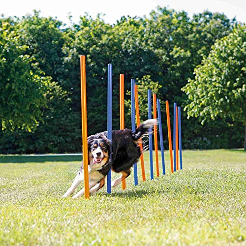 Trixie 3206 Dog Activity Agility Slalom, Kunststoff, ø 3 × 115 cm, 12 St., blau/orange