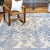 Home Dynamix Nicole Miller Patio Country Ayana Indoor/Outdoor Area Rug 7'9'x10'2', Traditional Gray/Blue