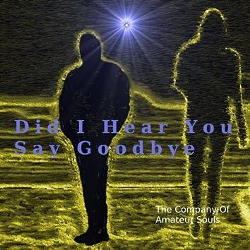 Did I Hear You Say Goodbye