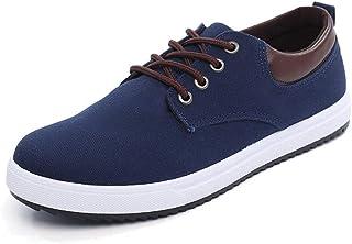 2019 Four Seasons Fashion Trend Casual Canvas Shoes Men's Shoes Men's Shoes Large Size Men's Shoes (Color : Blue, Size : 41)