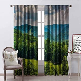 GloriaJohnson Landscape Heat Insulation Curtain View of Mountains in Potomac Highlands of West Virginia Rural Scenery Picture for Living Room or Bedroom W52 x L63 Inch Forest Green