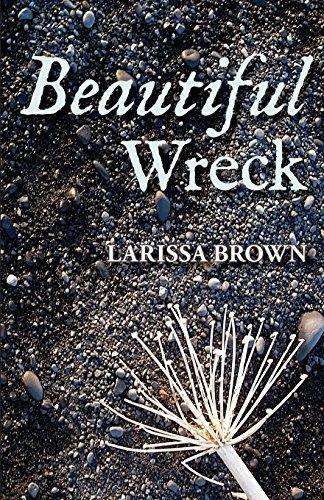 Beautiful Wreck by Larissa Brown (2014-01-15)
