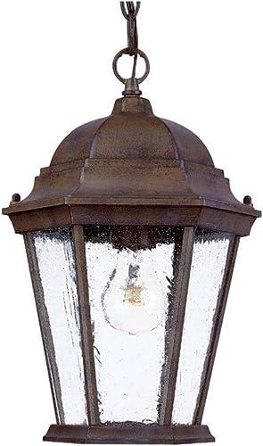popular Acclaim 5206BW Richmond Collection high quality 1-Light Outdoor Light Fixture Hanging Lantern, Burled online sale Walnut online