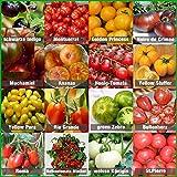 Tomaten Saat Set 16 x 10 Saatgut Tomaten Mix 100% Natursamen handverlesen aus Portugal, seltene und...