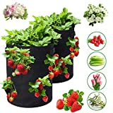 2 Pcs Fabric Pots, Potato Grow Bags 10 Gallon Grow Bags, Topsy Turvy Tomato Planter and Strawberry Planter with 6 Side Planting Pockets, Breathable Felt Plant Container with Handles (Black)