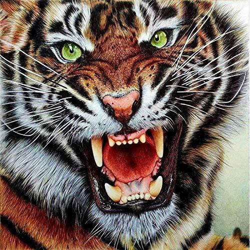 Diopn 5D diamant schilderij dier tijger kruissteek borduurwerk diamant mozaïek kunstdiamanten decoratie geschenk (ronde diamanten 30 x 40) 30 * 40