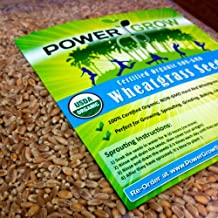 Certified Organic Non-GMO Wheatgrass Seeds - 5 Pounds Wheat Seed - Guaranteed to Grow