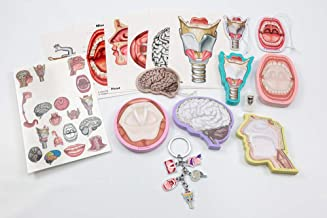 SLP Gift Box Collection, 17 Pack, Sticky Notes, Tattoos, and Key Chain, Post Card Set