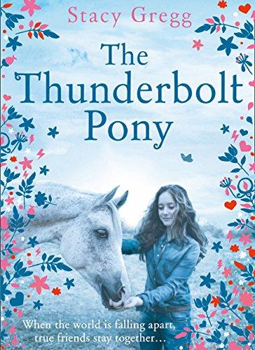 Gregg, S: Thunderbolt Pony