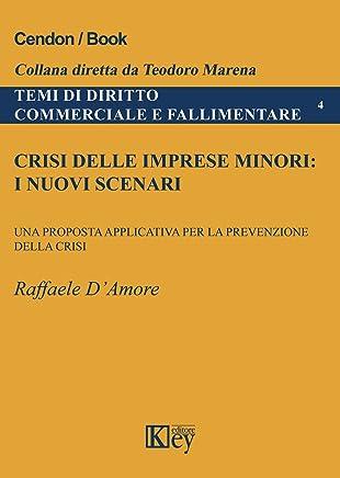 Crisi delle imprese minori: i nuovi scenari: Una proposta applicativa per la prevenzione della crisi (Temi di Diritto Commerciale e Fallimentare Vol. 4)
