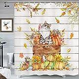 MERCHR Herbst-Katzen-Duschvorhang, lustige Katze, stehend, auf Kürbis-Ahornblättern, dekorativer Badezimmervorhang, Holztuchstoff, Duschvorhang-Set mit Haken, 174 x 178 cm, grau-gelb