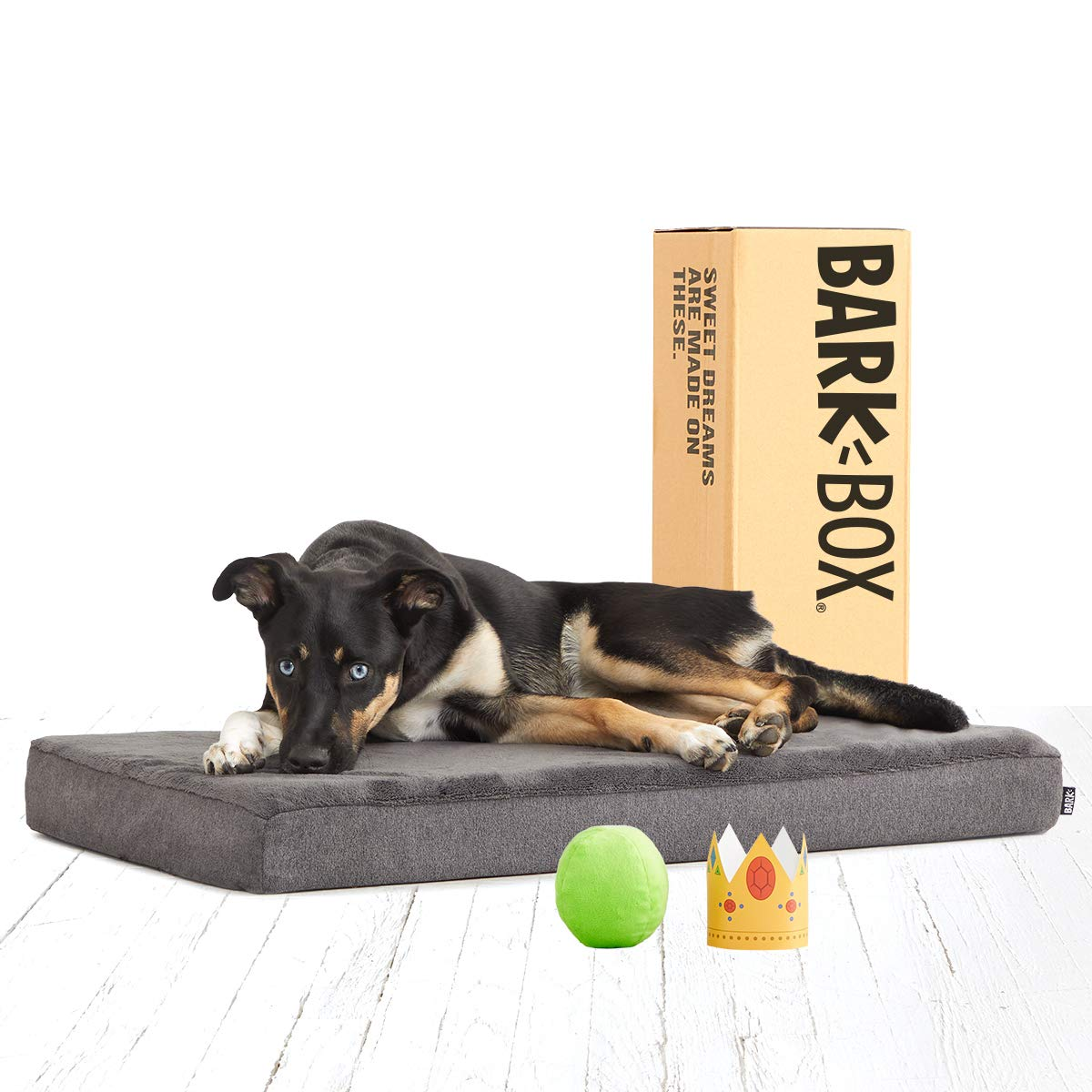 BarkBox Thick Orthopedic Memory Enhanced