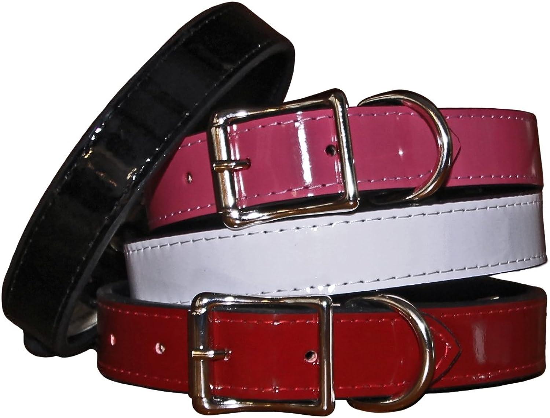Auburn Leathercraft Patent Leather Stitched Collar 5 8  x 12  White