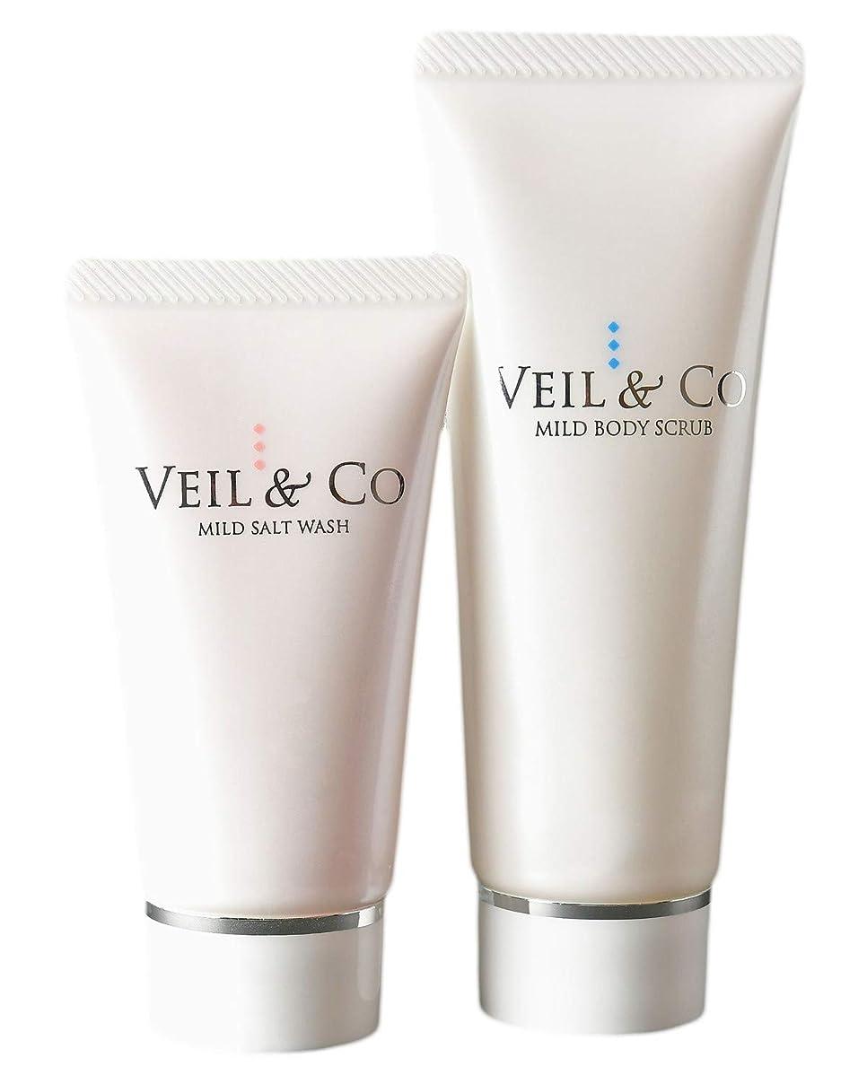 割るたっぷり気づかない【VEIL&Co】ベールアンドコー 毛穴専用ソルトエステ トラベルセット