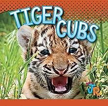 Tiger Cubs (Baby Animals)