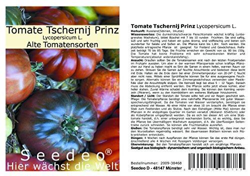 Seedeo® Tomate Tschernij Prinz (Lycopersicum L.) 25 Samen BIO